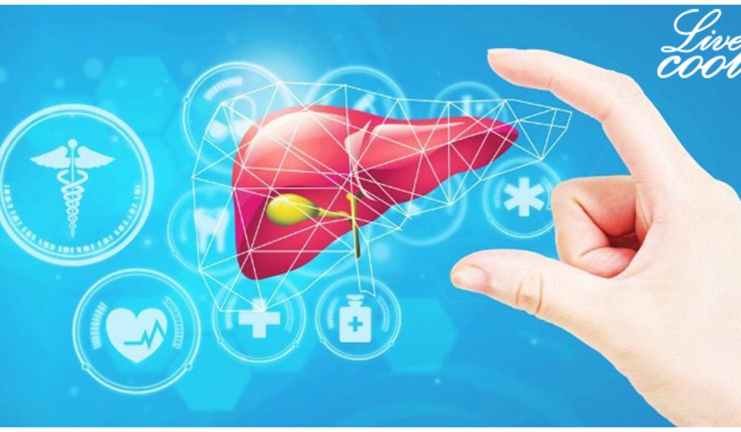 Các dấu hiệu nhận biết gan đang nhiễm độc, nhận biết dấu hiệu sớm và chữa kịp thời.