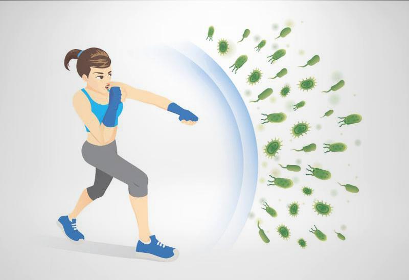 Cách tăng cường hệ miễn dịch tự nhiên bảo vệ sức khỏe du xuân đón Tết.